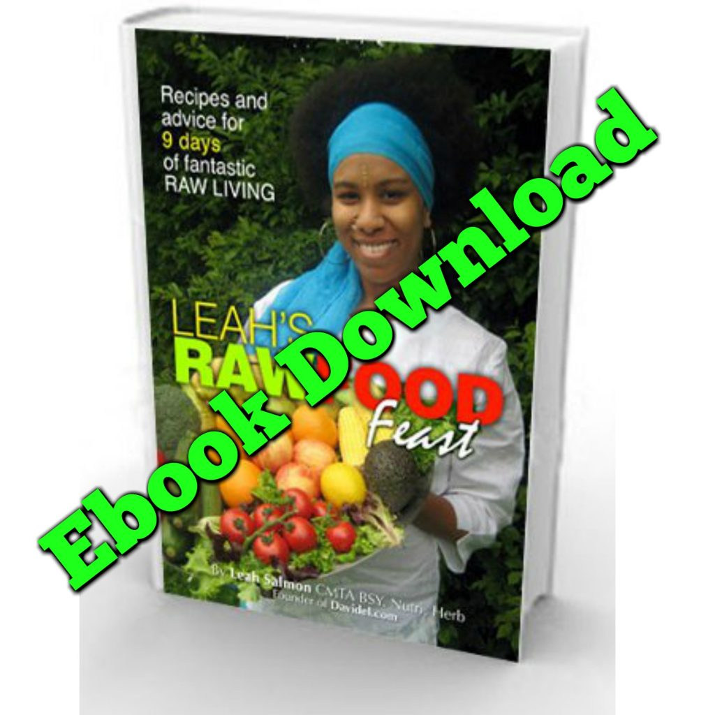 Leah's Raw Food Feast Ebook
